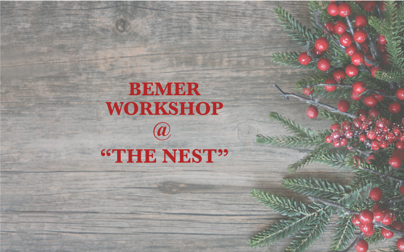 Bemer Workshop