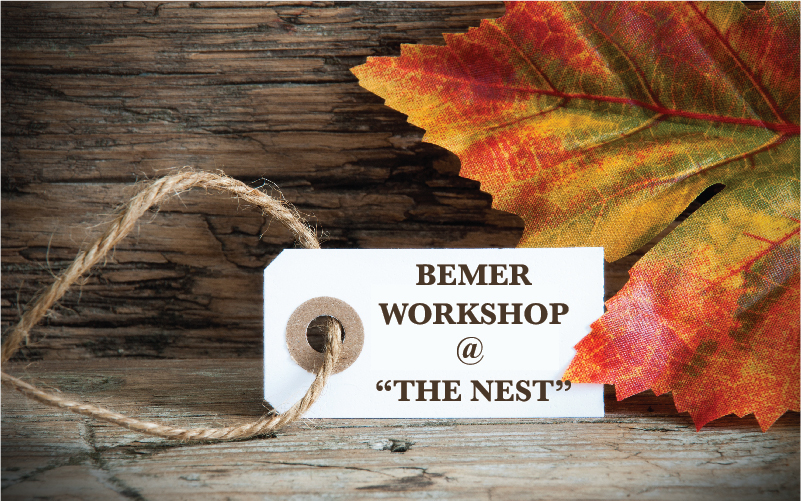 Bemer Workshop November